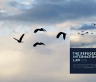 Cover image of The Refugee in International Law 4th edition